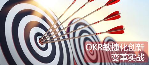 重新定义绩效管理:OKR敏捷化创新与变革实战